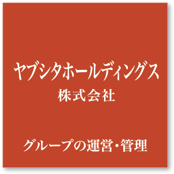 ヤブシタホールディングス株式会社